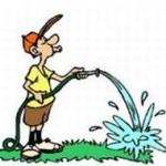 Watering Guy